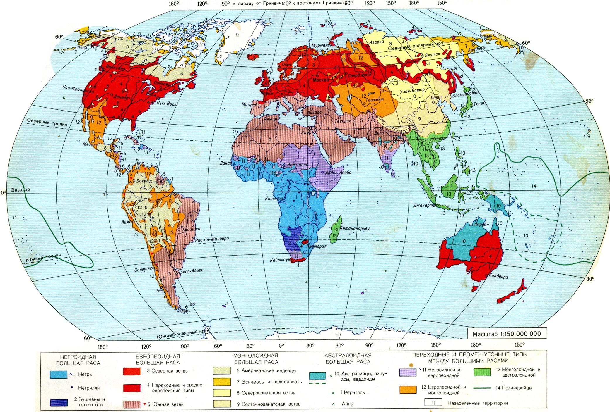 Расы мира негроидная