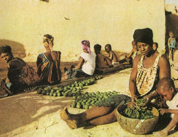 Африканки заставляют белого — photo 1