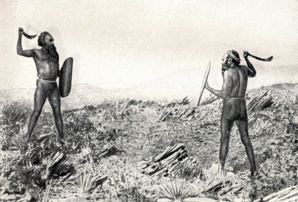 aboriginal genocide australia essay Dr shayne breen on the tasmanian aboriginal genocide (2008):  the island of tasmania is separated from the south coast of australia by the stormy waters of bass strait similar in size to ireland, tasmania 's present shape was formed some 10,000 years ago when the last ice age ended and global sea levels rose by some 130 metres and flooded.
