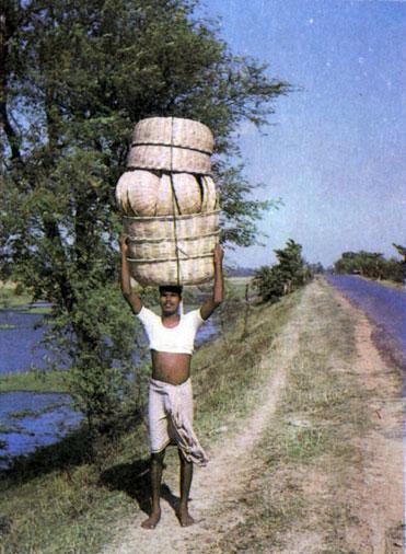 Ремесленники искусно плетут из соломы и бамбука корзины.  Вот один из них несет свою продукцию на рынок.
