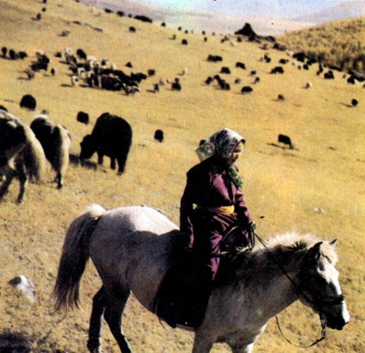 Монголия (Монгольская Народная Республика) [1982 - - Страны и ...